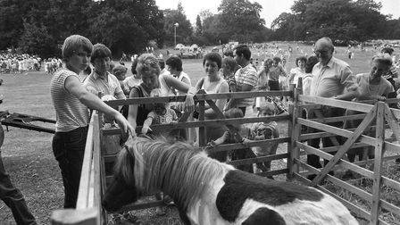 A petting zoo was among the attractions. Picture: RICHARD SNASDELL