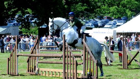 Crowds enjoy a hot and sunny day at the 179th Hadleigh Show on Saturday. Working hunters show jum