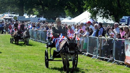 Crowds enjoy a hot and sunny day at the 179th Hadleigh Show on Saturday. The donkey classes respl