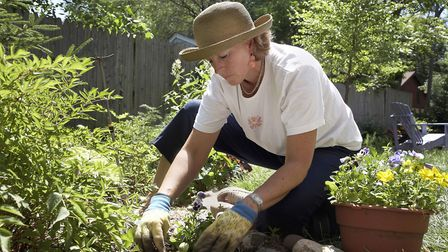 Simple garden task can burn off the calories. Calories. Picture: Thinkstock/PA