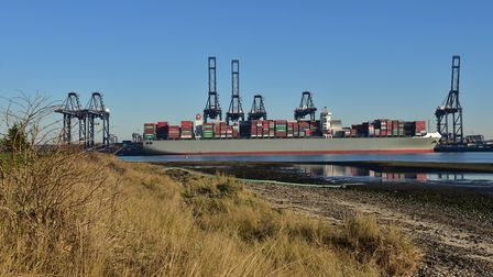 The guitars were brought into the country at the Port of Felixstowe. Picture: SARAH LUCY BROWN
