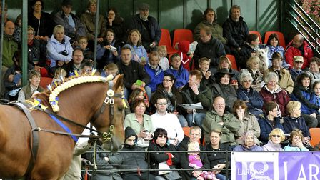 Suffolk Show crowds watching heavy horses on display in the Presidents Ring. Picture: ASHLEY PICKE