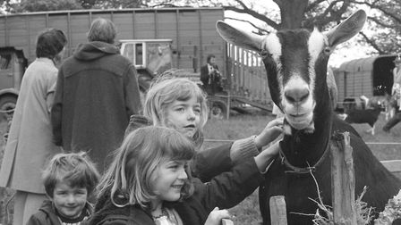 Youngsters at The Hadleigh Show in May 1981