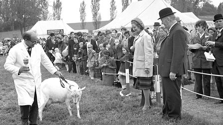 Hadleigh Show in May 1971