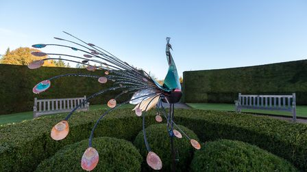 Dot Kuzniar - Peacock 2017. Art for Cure exhibition at Glemham Hall. Photo: Art For Cure