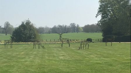 Andrew Kay Five Deer, Glemham. Art for Cure exhibition at Glemham Hall. Photo: Art For Cure