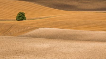 Folding Planet by Peter Bush will be on show at the East Anglian Federation of Photographic Societie