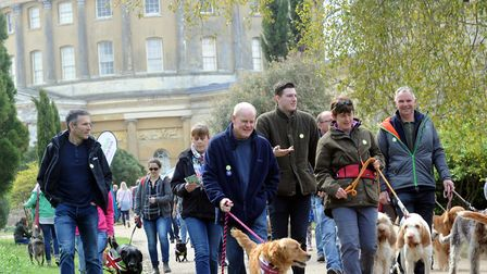 Last year's Great British Dog Walk in aid of Hearing Dogs for Deaf People in Ickworth Park. Pictur
