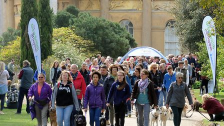 Last year's Great British Dog Walk in aid of Hearing Dogs for Deaf People at Ickworth Park. Picture: