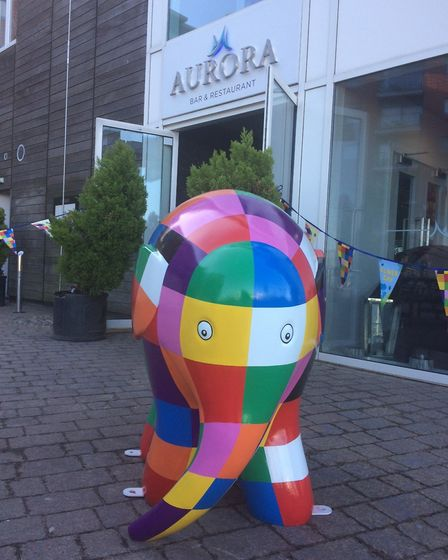 The elephants will add a splash of colour to the town for residents and visitors. Picture: ADRIAN RA