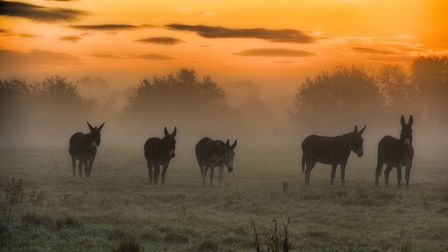 The region is expected to see sunshine and blue skies after early morning mist patches. Picture: JOH