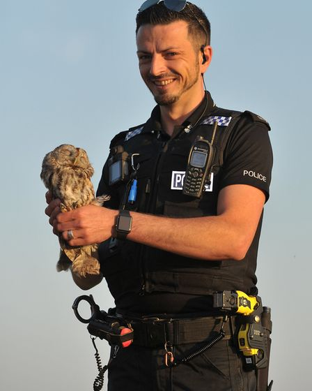 Pc Carlo Di Franco with the tawny owl he rescued Picture: SARAH LUCY BROWN
