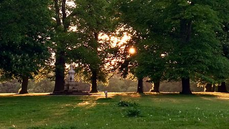 Christchurch Park on a summer evening Picture: SUE FOSTER