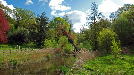Hollywells Park Picture: PETER CUTTS