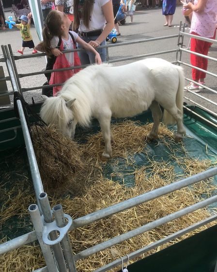 A pony at one of the displays at the Whitsun Fayre in Bury St Edmunds