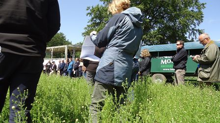 Visitors at an Integrated Farm Management Field Event hosted by LEAF at Elveden Estate in May Pictur