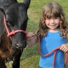Four year old young handler Evie Lanham with her Aberdeen Angus calf, Poppy Picture: SARAH LUCY BRO
