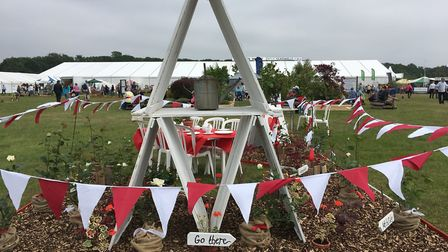 Poppies featured heavily in the displays by schools, who focused on the theme of remembrance Pictu