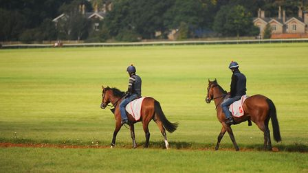 The Warren Hill Gallops in Newmarket - there are many wonderful parts of Suffolk, but what would mak