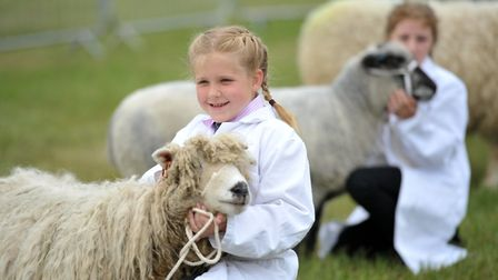 Young handlers class at the Suffolk Show Picture: SARAH LUCY BROWN
