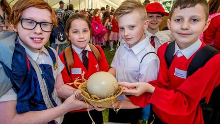 Essex Schools Food and Farming Day 2018, hosted by Writtle University College and organised by Essex