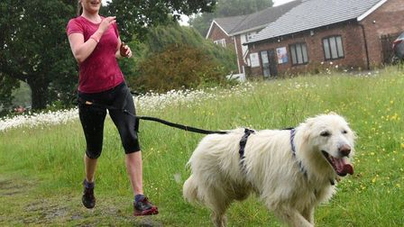 Runners and dogs lapped up the wet conditions at the Mulbarton parkrun in Norfolk last weekend. Pict