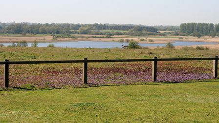 The Island Mere at Minsmere from the top of Whin Hill. Picture: PAUL GEATER