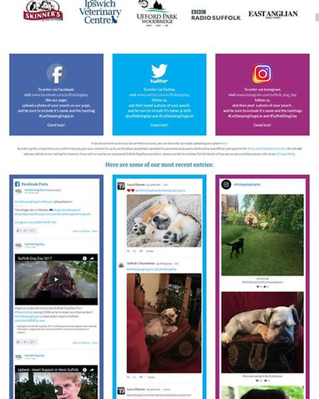 The LetSleepingDogsLie competition page Picture:SUFFOLK COMMUNITY FOUNDATION