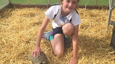 Ella pleased to be back with her friend Chalky Picture: RSPCA