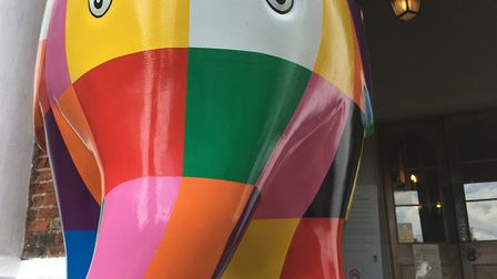 Elmer will be staying in Christchurch Mansion for the next few days Picture: KATY SANDALLS
