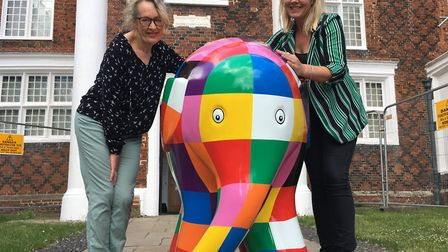 Carole Jones from Ipswich Borough Council and Joanne Beattie from Elmer's Big Parade Suffolk Pictur
