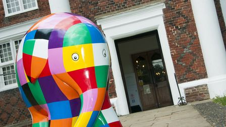 Elmer will be one of many to be taking part in next year' s parade Picture: NICOLE DRURY