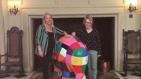 Elmer will be staying in the Mansion for the next few days Picture: KATY SANDALLS