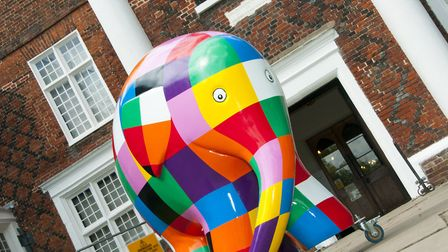 Elmer will be the star guest at this weekend's teddy bear's picnic Picture: NICOLE DRURY