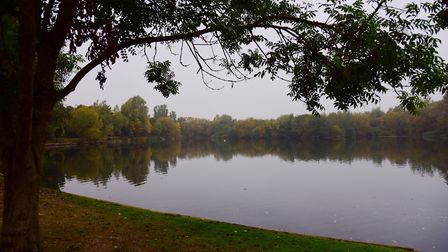 Needham Lake. Picture: SARAH LUCY BROWN