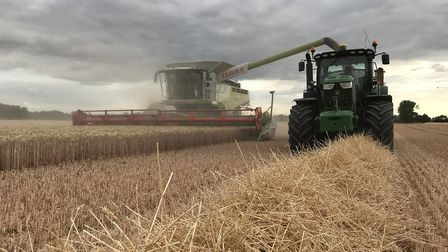 Andrew Fairs of Fairking's combine at work on a wheat field as harvest gets into full flow Picture: