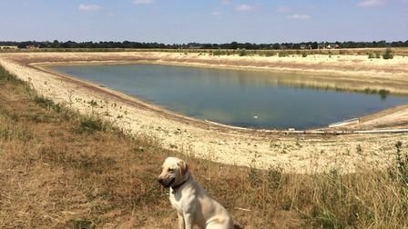 One of the depleted reservoirs at onion and potato growers P G Rix (Farms) Ltd which farms between B