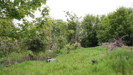 The land east of the High Street, where the campaigners hope to create a brand new park Picture: HAL