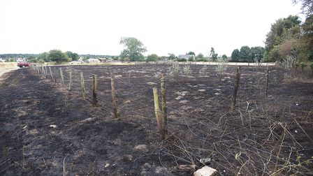 The burnt out field in Brandon. Picture: Ian Burt