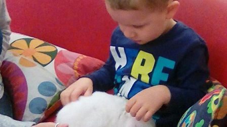 Harry having a cuddle with one of the children Picture: LAXFIELD PRE-SCHOOL
