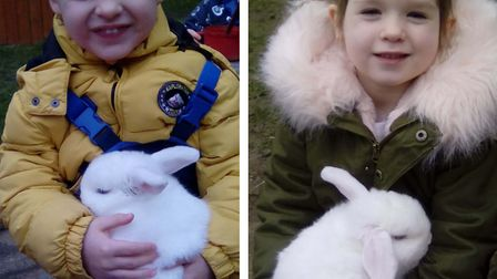 Harry the rabbit is a big favourite among the pre-school children Picture: LAXFIELD PRE SCHOOL