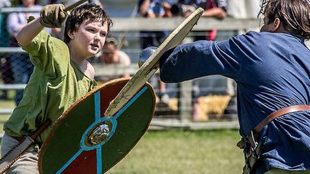 The History Alive show is coming to Stonham Barns this weekend Picture: DAVID BRACEY