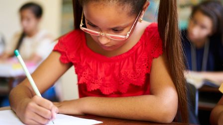 There is an increasing demand for specialist school placements in Suffolk Picture: GETTY IMAGES/ISTO
