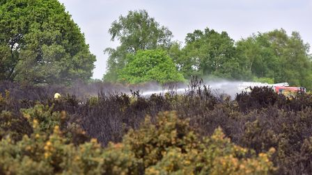 A previous heath land fire on Rushmere Heath Picture: SARAH LUCY BROWN