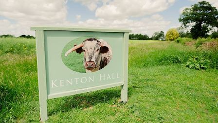 The Driveway to Kenton Hall, near Stowmarket, where the outdoor cinema screenings will be held Pictu