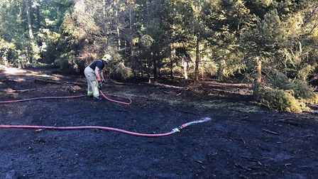 Firefighters tackle the blaze in Brandon Forest. Picture: SUFFOLK FIRE AND RESCUE SERVICE