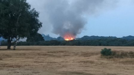 The fire on Rushmere Heath on Friday Picture: MATTHEW CALVER