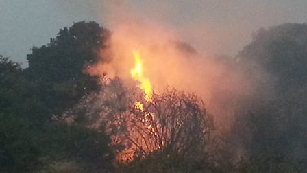 The fire on Rushmere Heath on Friday Picture: DAVE BROWN