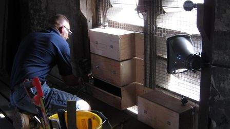 Swift boxes being installed in St Peter's in Sudbury