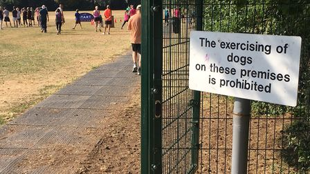 Swaffham parkrun is held within school grounds, so dogs are not allowed to take part. Picture: CARL